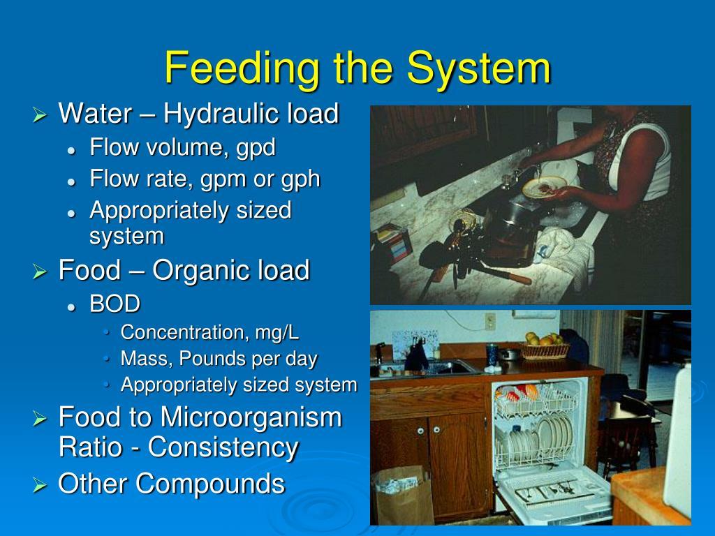 Feeding the System