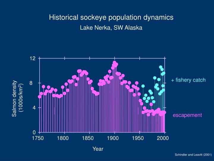 Historical sockeye population dynamics