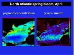 north atlantic spring bloom april9