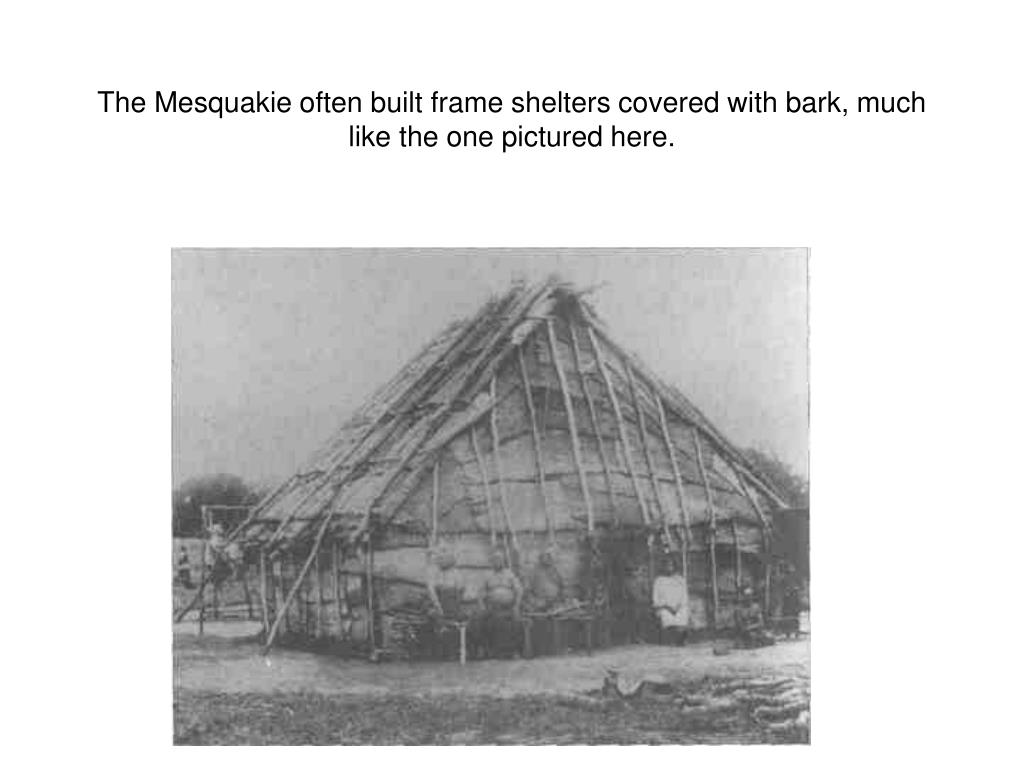 The Mesquakie often built frame shelters covered with bark, much like the one pictured here.