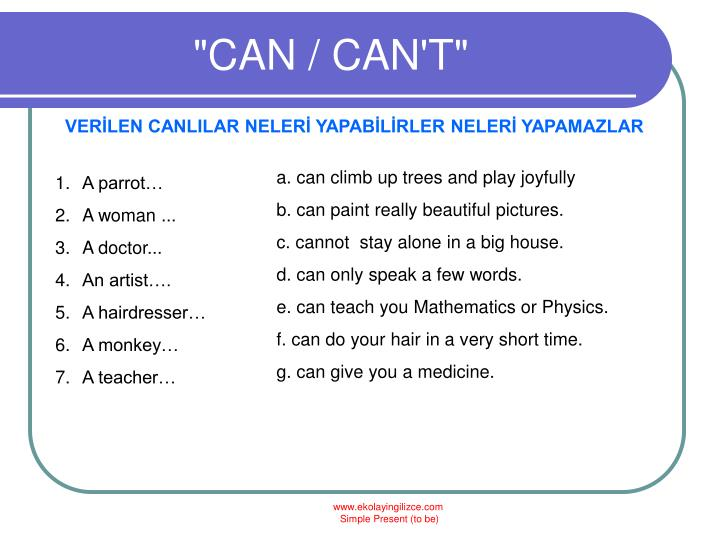 """""""CAN / CAN'T"""""""