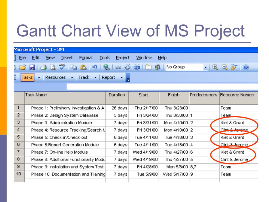 Gantt Chart View of MS Project