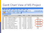 gantt chart view of ms project17