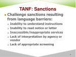 tanf sanctions