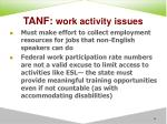 tanf work activity issues58
