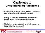 challenges to understanding resilience