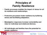 principles of family resilience54
