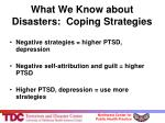 what we know about disasters coping strategies