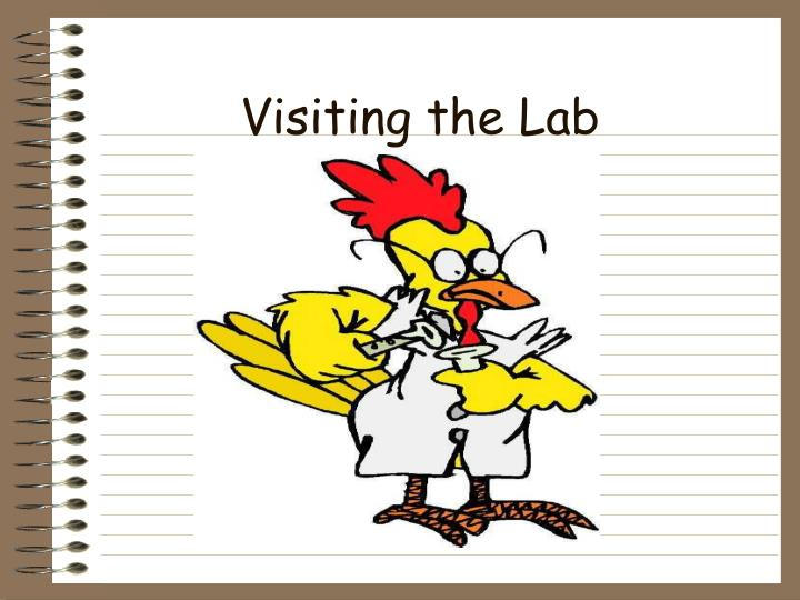 Visiting the Lab