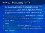 how to managing ant s