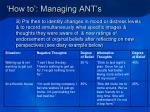 how to managing ant s18