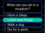 what can you do in a museum1