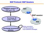 bgp protocol bgp sessions