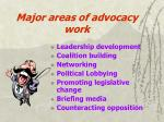major areas of advocacy work