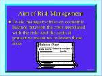 aim of risk management