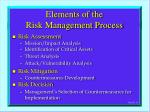 elements of the risk management process