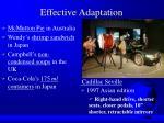 effective adaptation