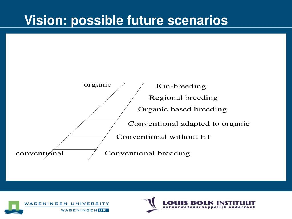 Vision: possible future scenarios