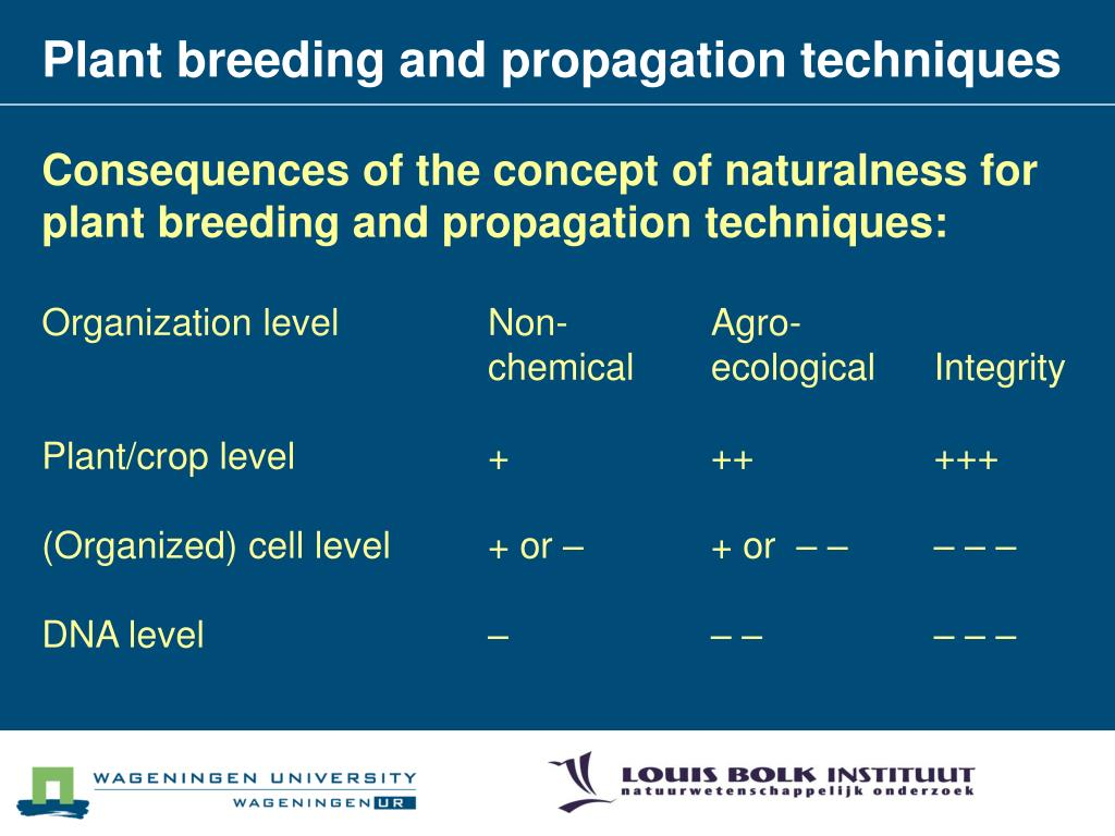 Plant breeding and propagation techniques