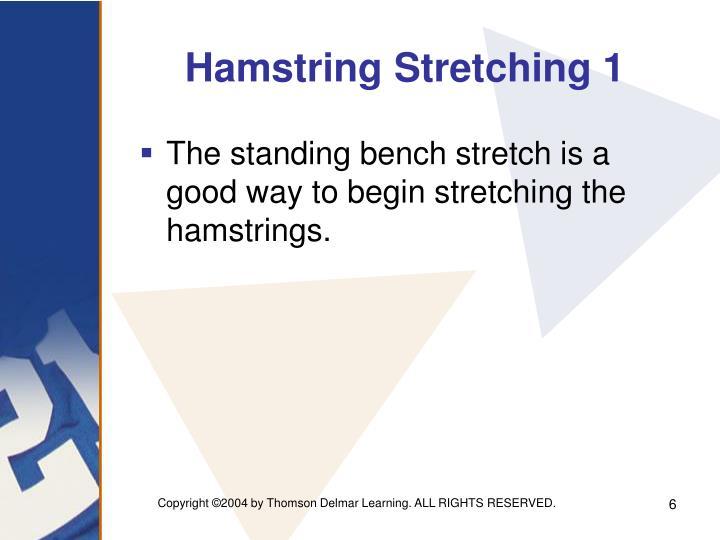Hamstring Stretching 1