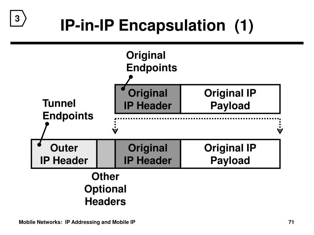 IP-in-IP Encapsulation  (1)
