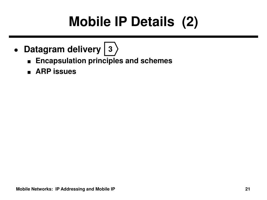 Mobile IP Details  (2)