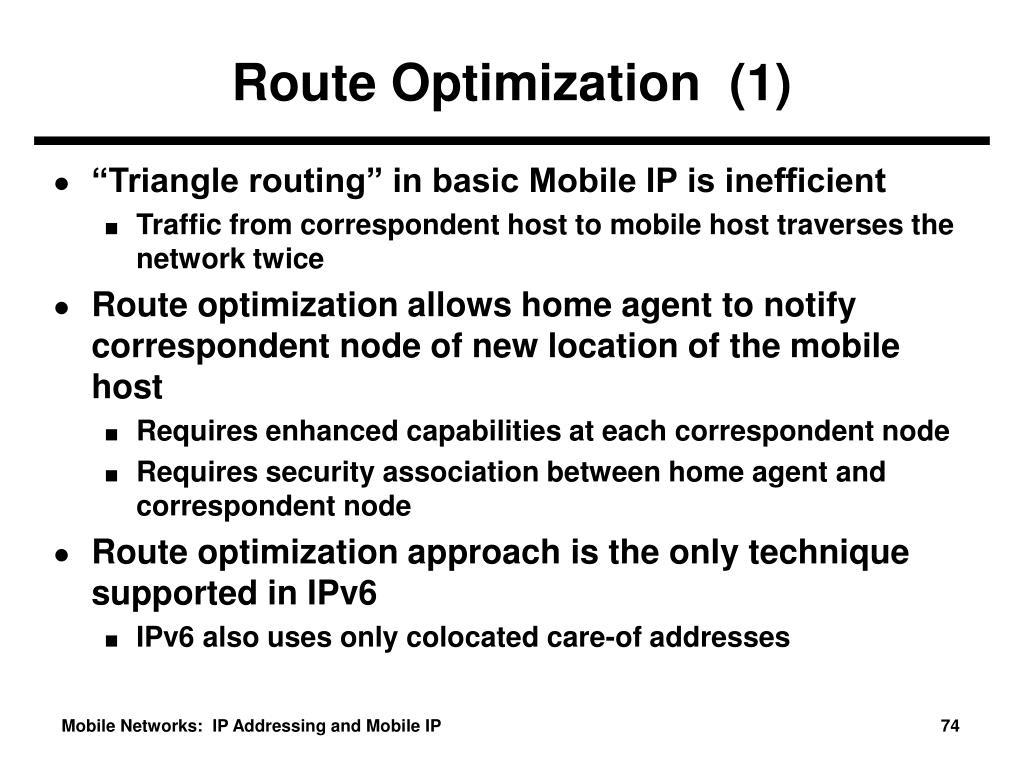 Route Optimization  (1)