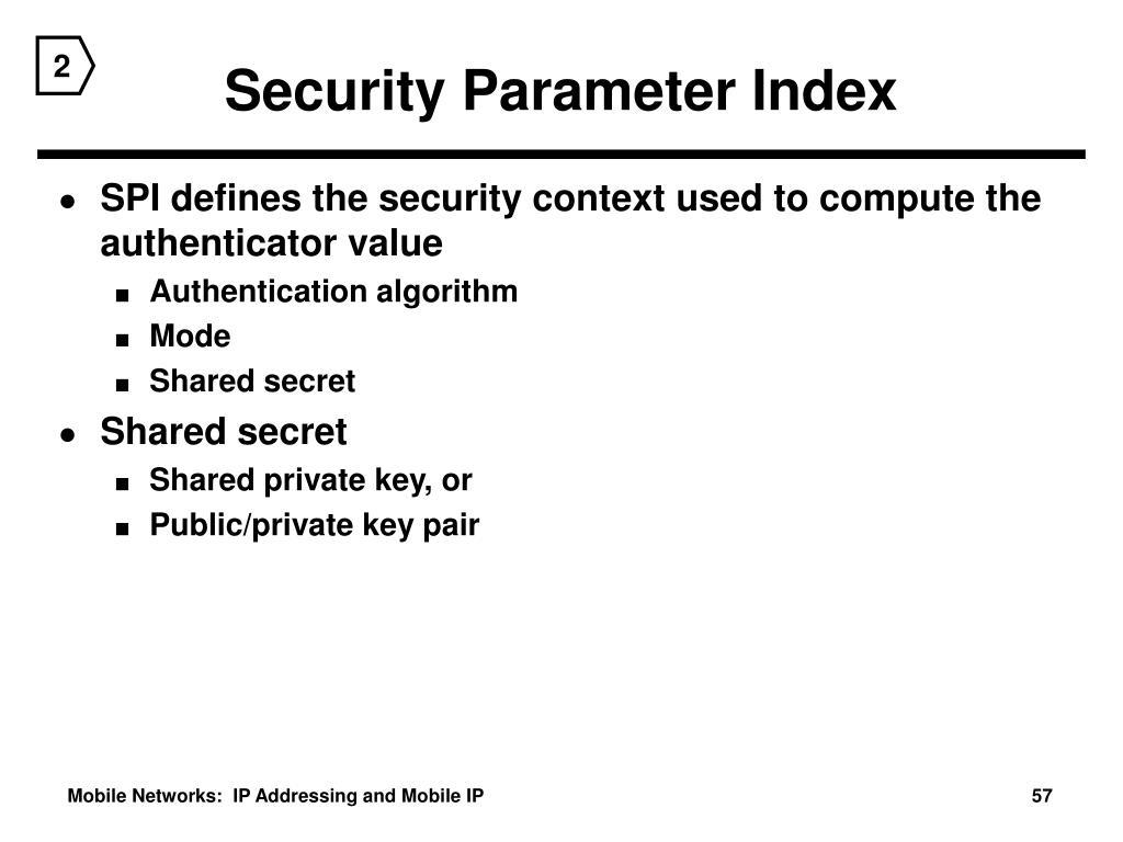 Security Parameter Index