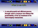 what is an apa