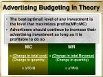advertising budgeting in theory