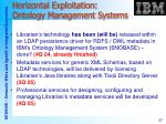 horizontal exploitation ontology management systems