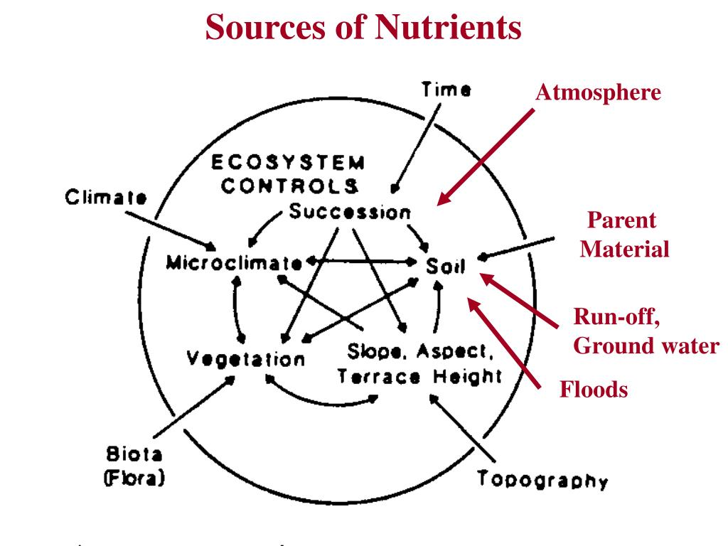 Sources of Nutrients