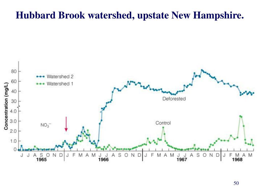 Hubbard Brook watershed, upstate New Hampshire.