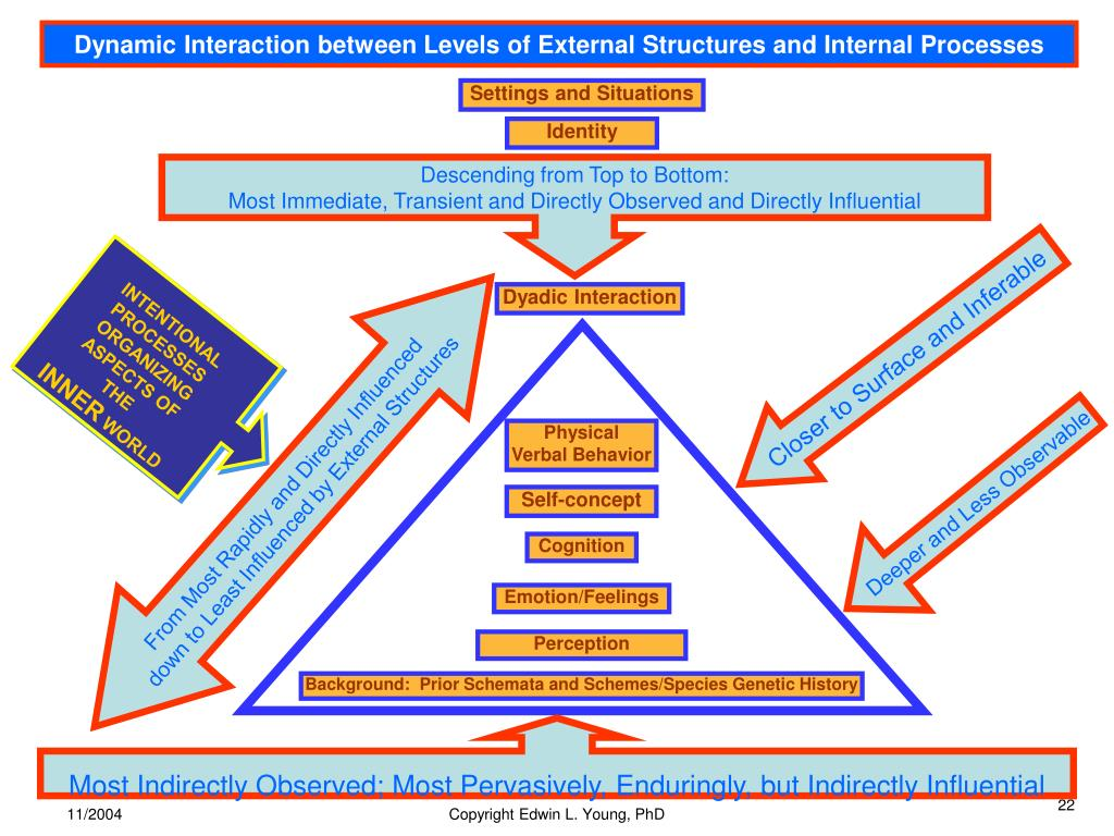 Dynamic Interaction between Levels of External Structures and Internal Processes