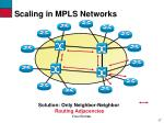 scaling in mpls networks