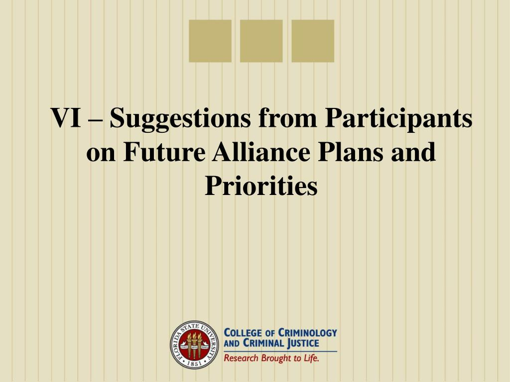 VI – Suggestions from Participants on Future Alliance Plans and Priorities
