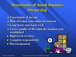 drawbacks of small business ownership12