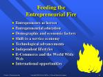feeding the entrepreneurial fire15