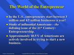 the world of the entrepreneur