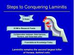steps to conquering laminitis