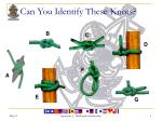 can you identify these knots