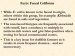 facts faecal coliforms