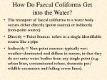 how do faecal coliforms get into the water