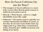 how do faecal coliforms get into the water1