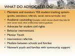 what do advocates do