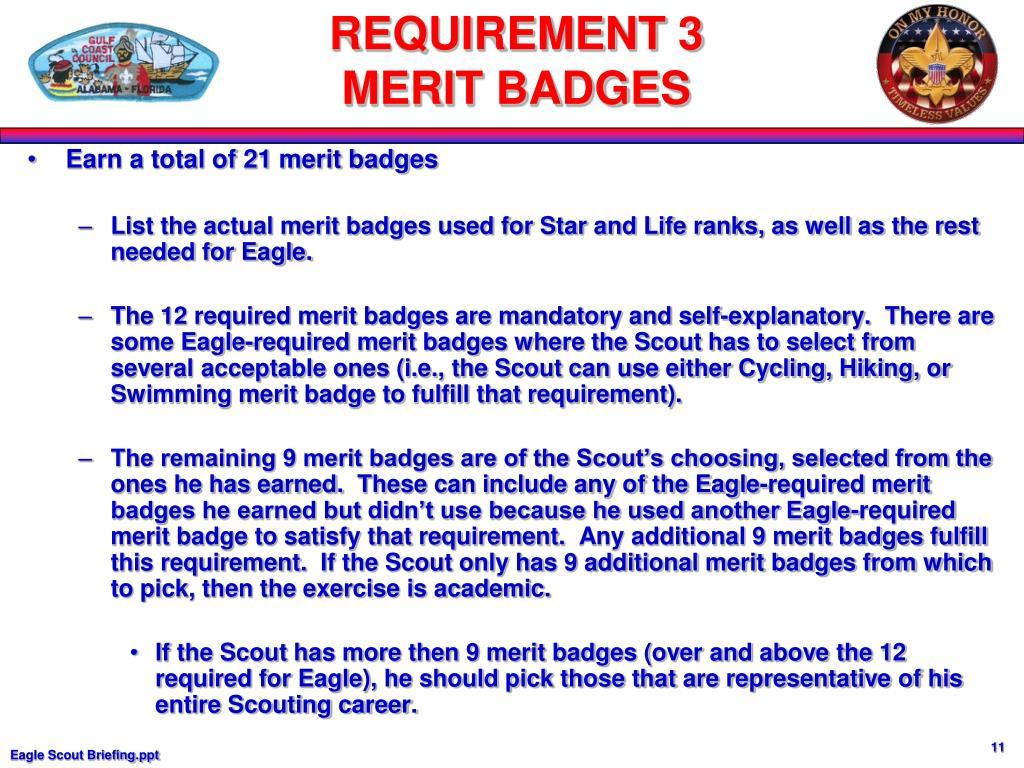 Earn a total of 21 merit badges