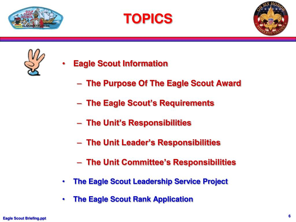 Eagle Scout Information