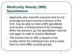 medically needy mn spenddown