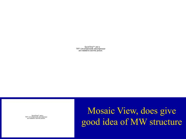 Mosaic View, does give good idea of MW structure
