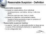 reasonable suspicion definition